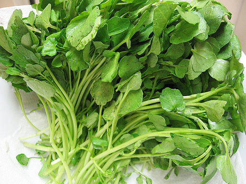 Watercress-1.jpg