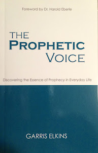 A New Book - The Prophetic Voice