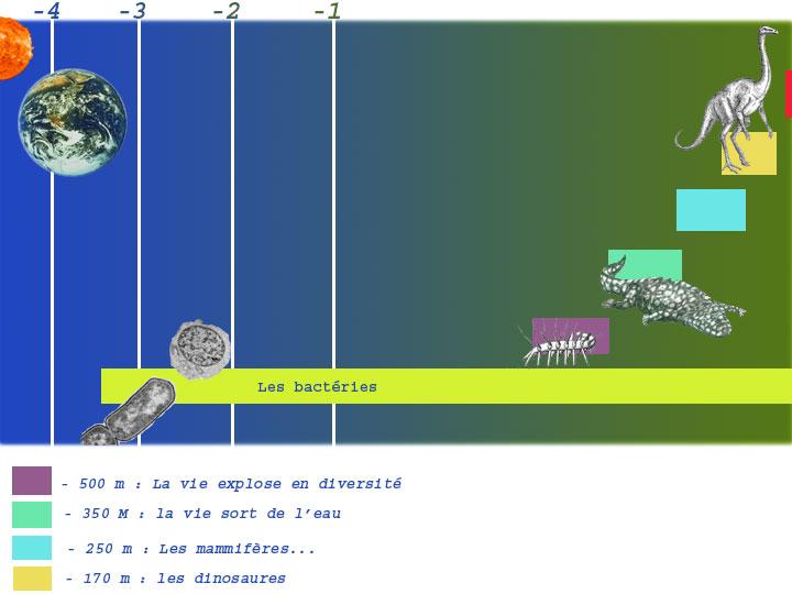 les origines de la vie sur terre