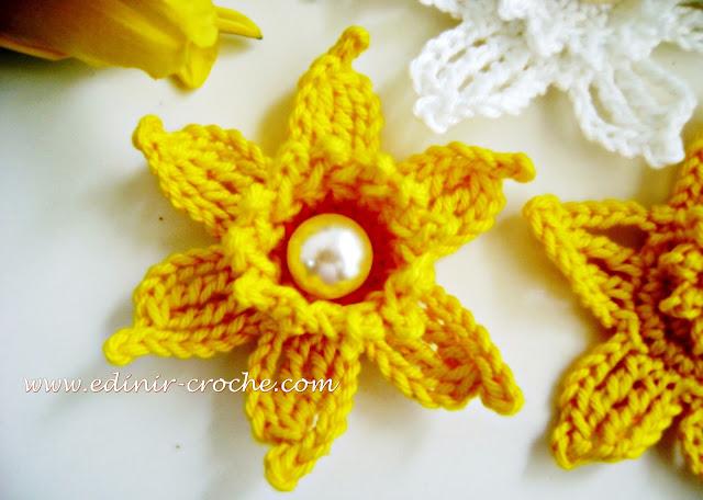 flores em croche narcisos da coleção aprendi e ensinei com edinir-croche dvd videos aula curso blog loja