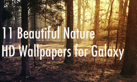 11 Beautiful Nature HD Wallpapers for Galaxy S4