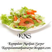 Kumpulan Manfaat Sayur Bagi Kesehatan