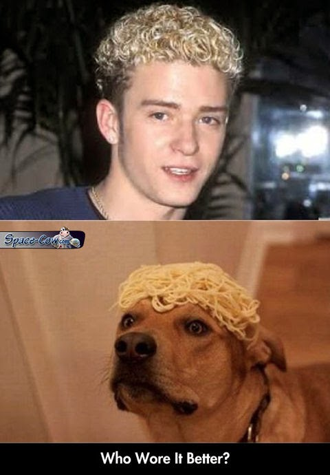 funny celebrities dog picture