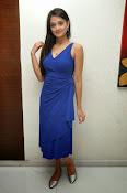 Nikitha Narayan glam pics in blue-thumbnail-7