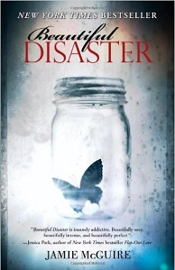 Novel Beautiful Disaster by Jamie Mcguire Bekas