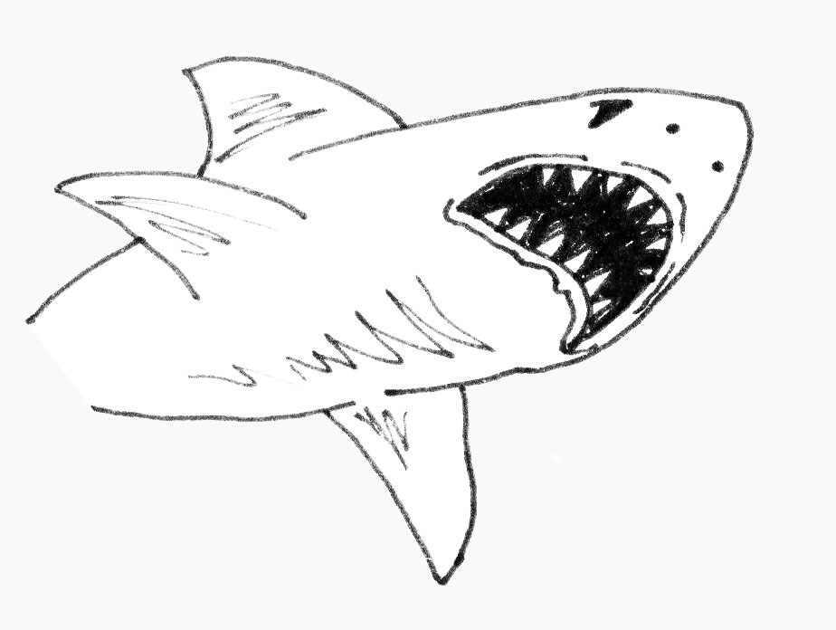 Buckdawg\'s Blog: Test Animation - Whales, Sharks, Water and Clouds!