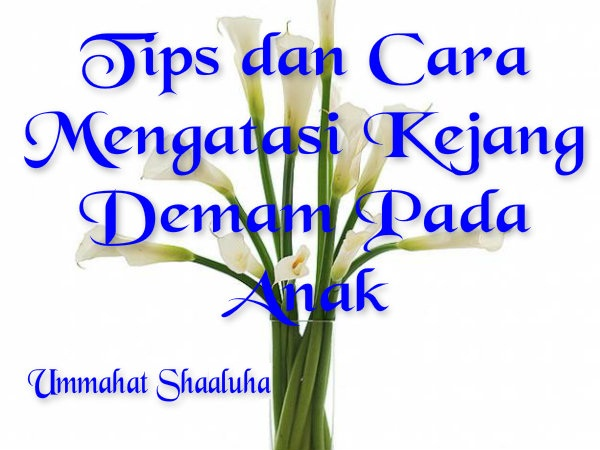 Ummahat Shaaluha: Tips dan Cara Mengatasi Kejang Dengan ...
