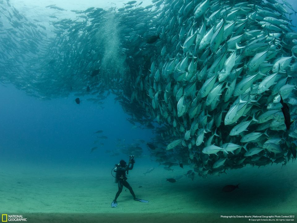 Underwater in mexico
