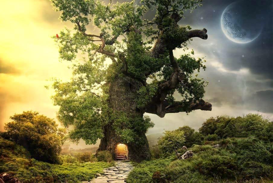 night-art-tree-pathway-night-moon-day