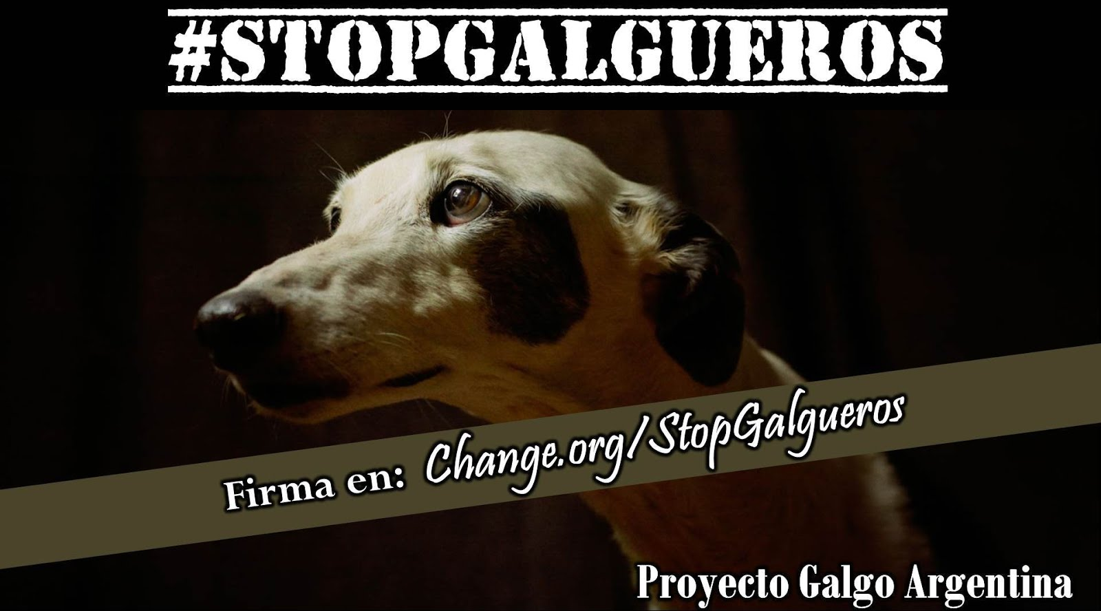 #STOPGALGUEROS
