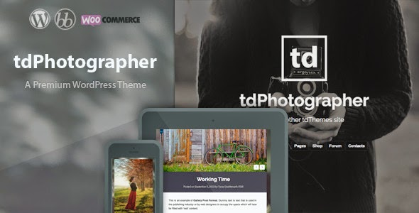 tdPhotographer - WordPress Theme