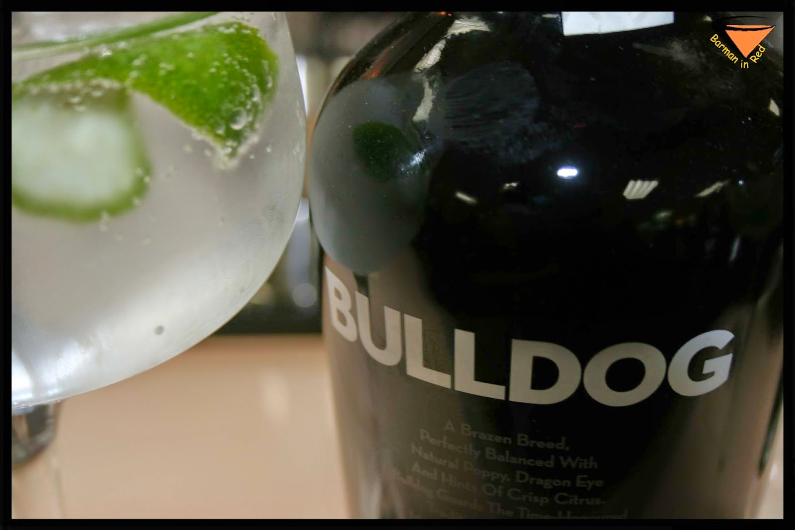 Bulldog Gin