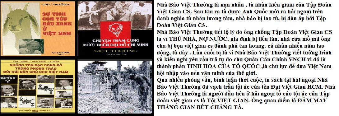 Nhà Báo Việt Thường