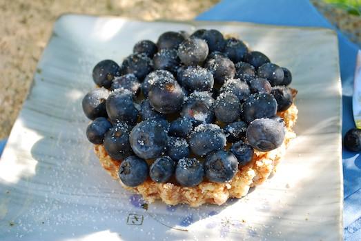 No Bake BlueberryCustard Tarts