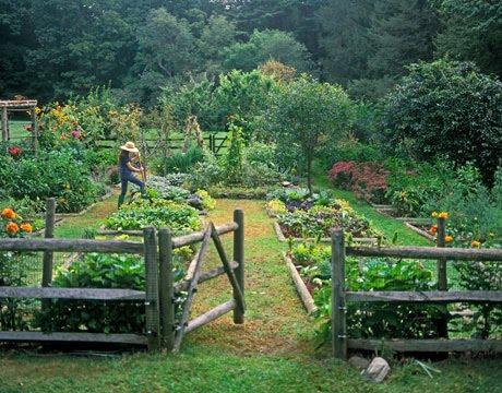 Cest La Vie French Potager Garden