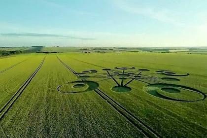 Kembali, Crop Circle Rumit Muncul di Ladang Gandum