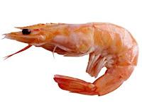 camaron - venta del soton - marisco mix