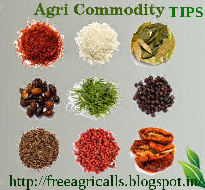 for Agri Commodity Tips ,  Commodity free tips  , Commodity intraday tips , Agri commodity calls , free commodity tips