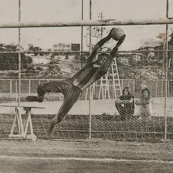 Ceub, 1973