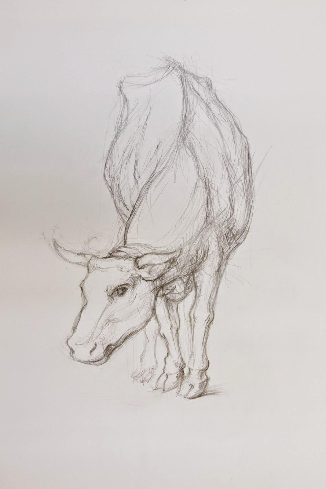 resim kursu hayvan çizimi