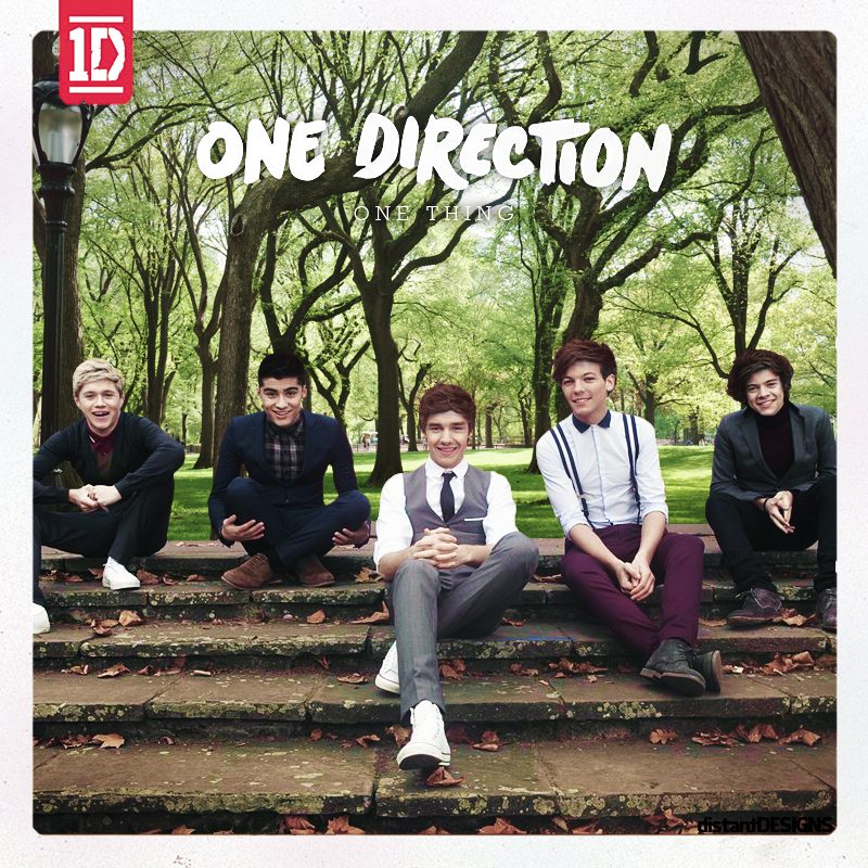One Direction - One Thing | Distant Designs