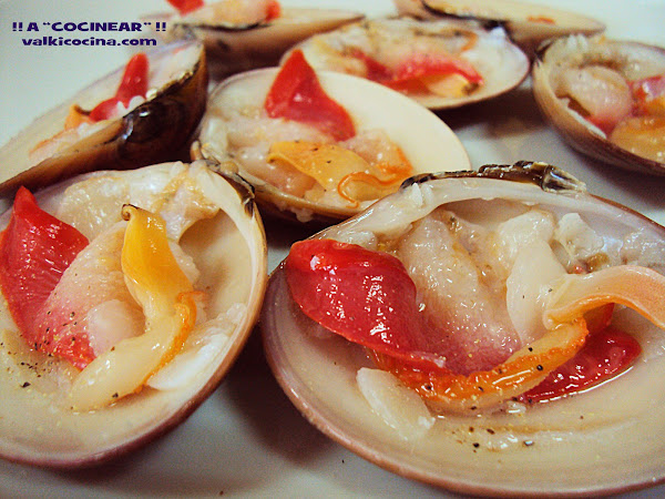 Conchas finas cocinar en casa es for Como cocinar conchas finas