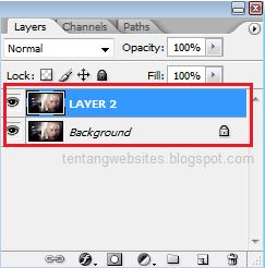 Pengertian dan fungsi layer
