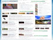 Solothum Jasa Pembuat Web