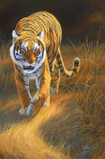 paisajes-con-tigres