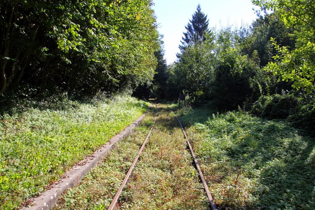 Ancienne voie ferrée rando rail pas de calais tourisme insolite activité