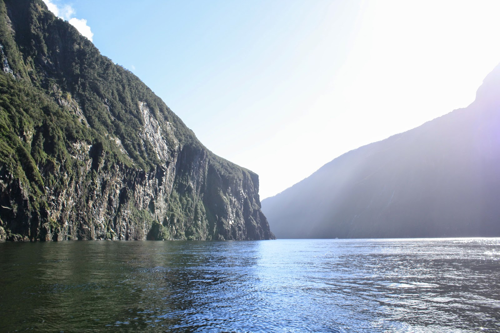 Milford Sound, looking all pretty.