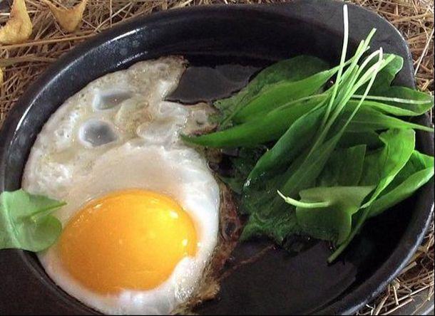 thumb licheni creveti pe gheata si morcovi deshidratati vezi cum arata farfuriile la cel mai bun restaunat din 13 Noma, Copenhaga... Cel mai tare restaurant din lume si n 2012   poze
