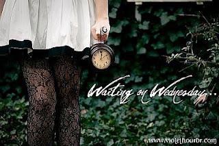 Waiting On Wednesday! (10)