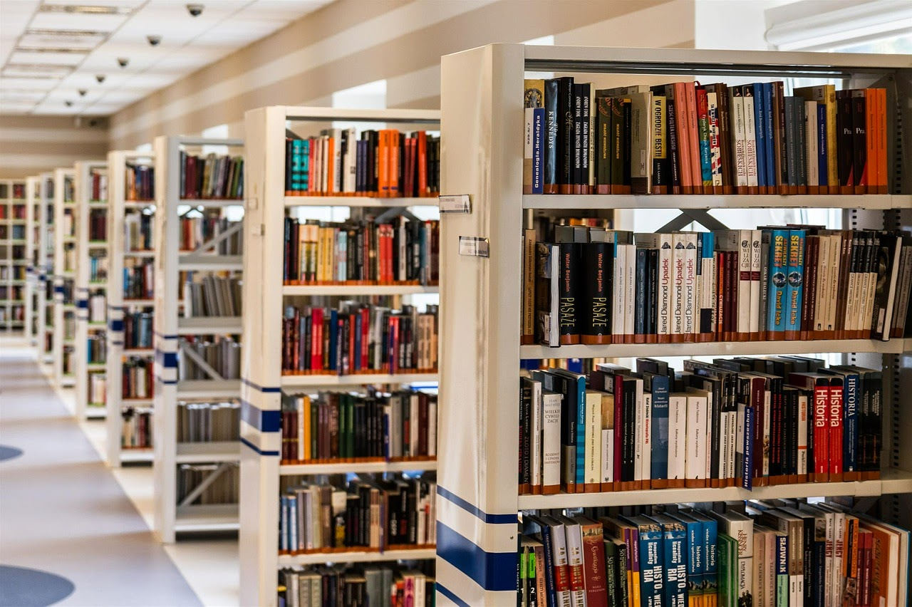 library-biblioteca