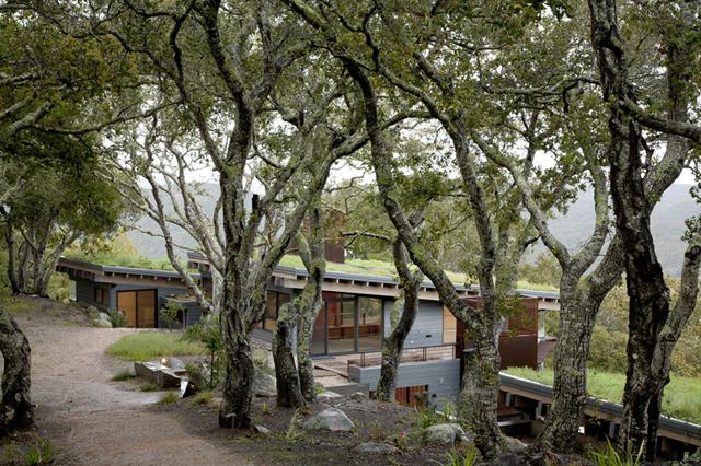 Arquitetos usam telhado ecológico em seus projetos
