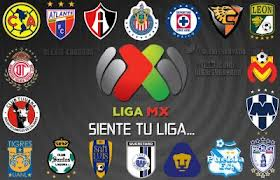 POSICIONES LIGA MX 2013