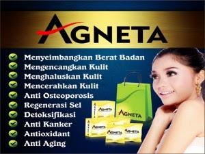 Manfaat Agneta