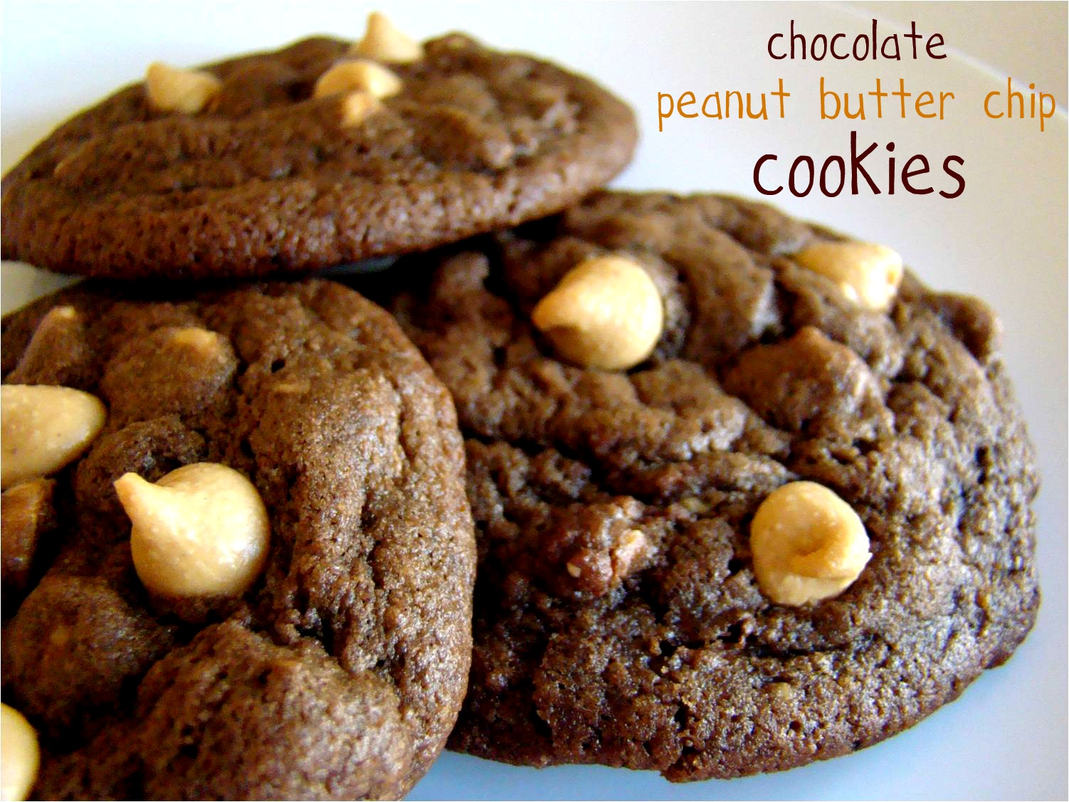 Family Feedbag: Chocolate peanut butter chip cookies