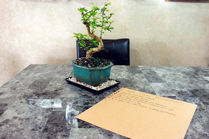 pro flowers order flowers online