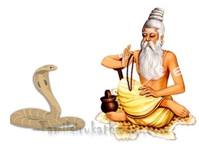 snake-munivar