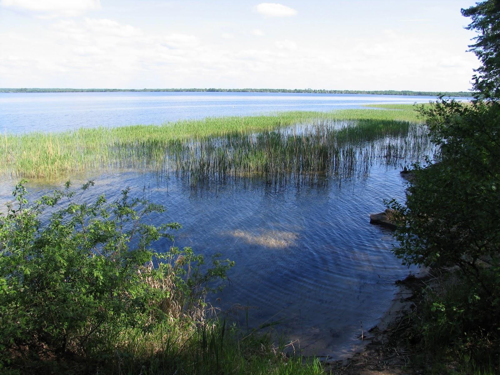 новолукомль озеро рыбалка