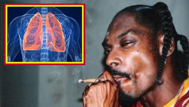 This Is What Happens To Your Lungs If You Smoke Marijuana