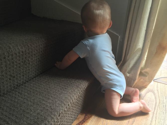 Squidge kneeling against the bottom step
