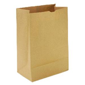 brown bag book report 5th grade