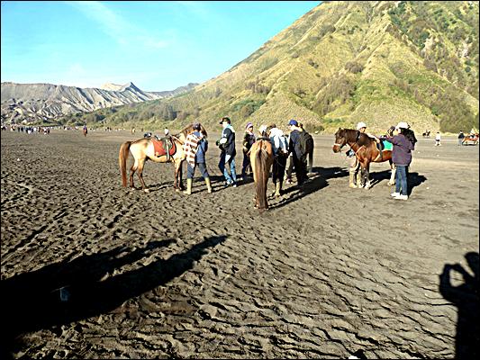 Jurnal Paket Wisata Bromo - Menawarkan Kuda