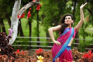 Actress Archana  Saree Pictures From Anandini Telugu Movie  12.jpg