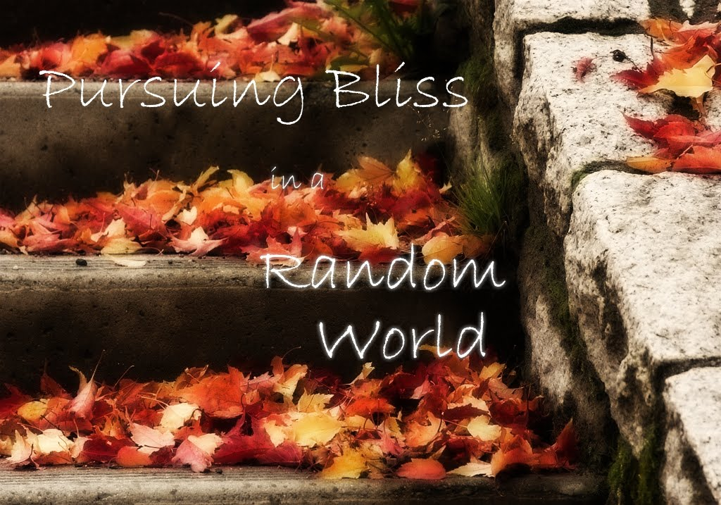 Pursuing Bliss in a Random Life