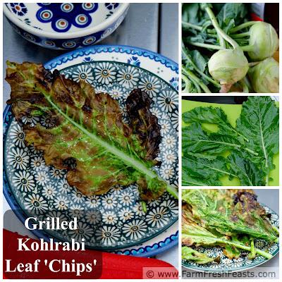 http://www.farmfreshfeasts.com/2015/06/grilled-kohlrabi-leaf-chips-on-stick.html