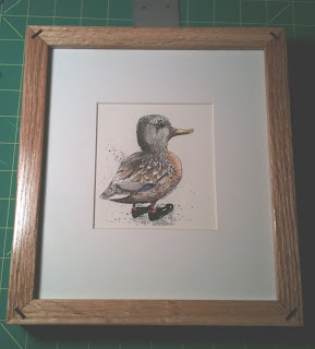 ammon perry illustration harrisburg pa duck in frame pen ink drawing