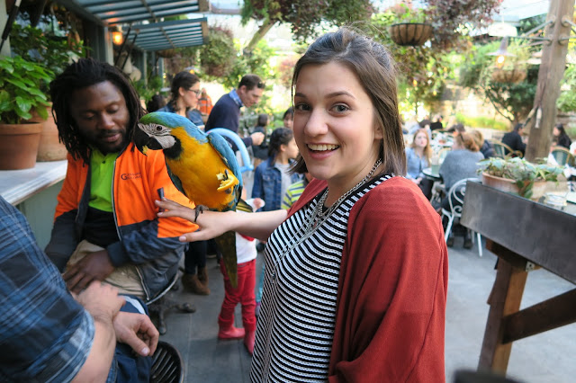 The Potting Shed Caitie and Fluffy the Macaw